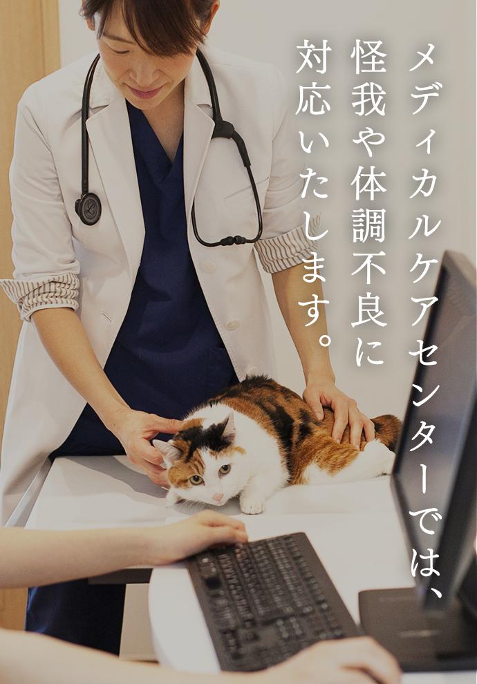 メディカルケアセンターでは、 怪我や体調不良に 対応いたします。