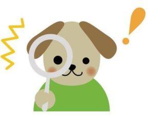 知っておくと安心!犬の肥満細胞腫 早期発見と治療について